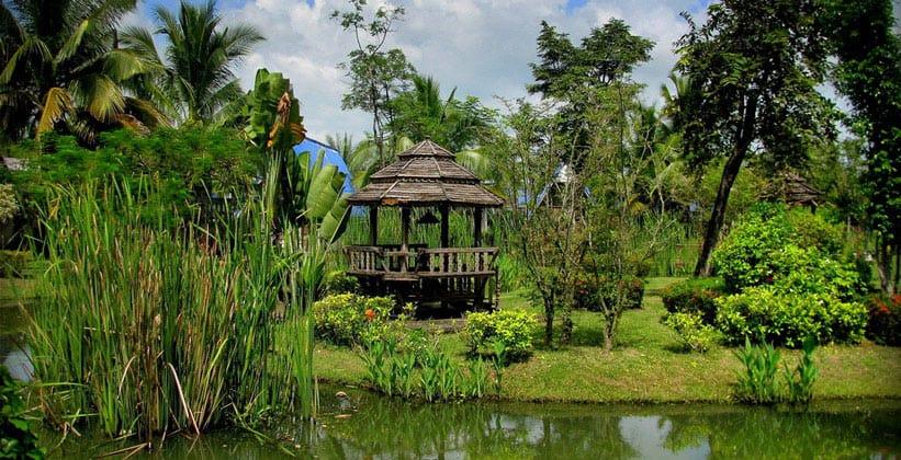 Природа Северо-восточного Таиланда