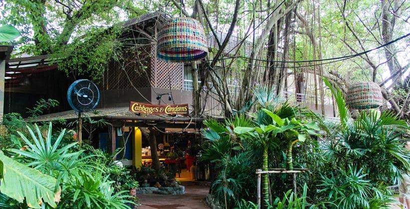 Ресторан Cabbages and Condoms в Паттайе