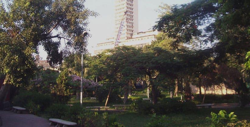 Сады Эзбекия в Каире