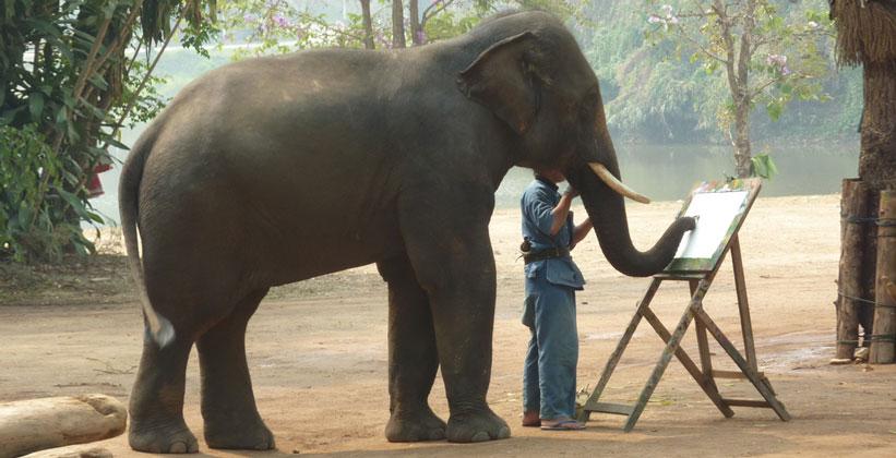 Обучение рисованию слонов тайского центра