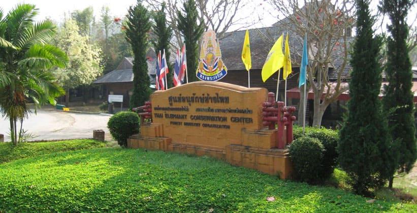 Тайский Центр охраны слонов