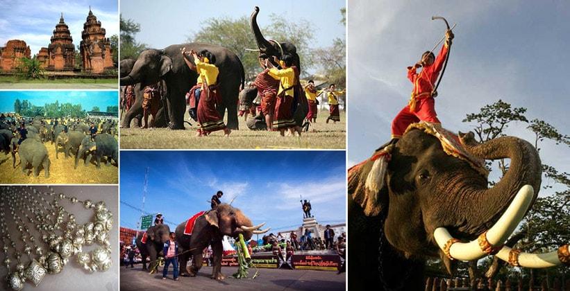 Слоновья деревня Бан Та Кланг в Таиланде