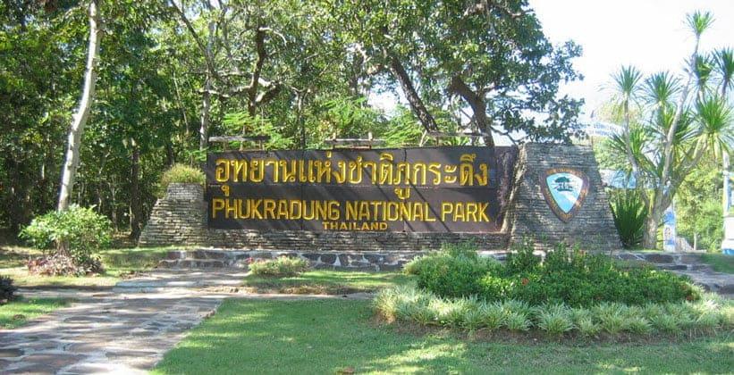Национальный парк Пху Крадунг в Таиланде