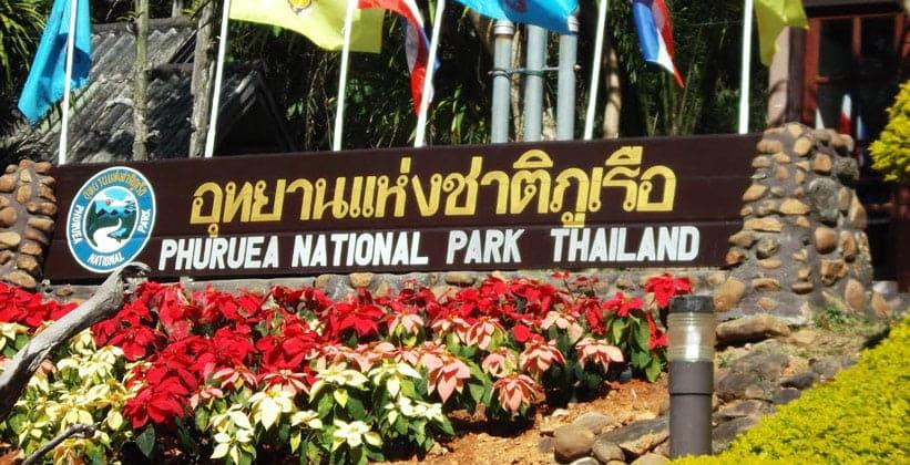 Национальный парк Пху Руеа в Таиланде
