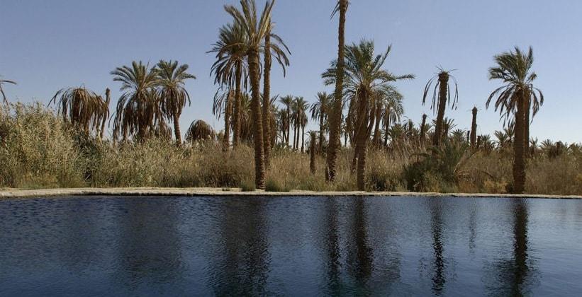 Остров Фатнис в Египте