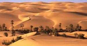 Оазис Бахария в Египте
