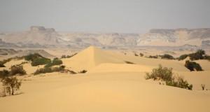 Оазис Фарафра в Египте