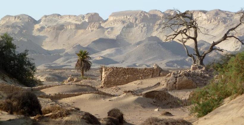 Оазис Харга в Египте