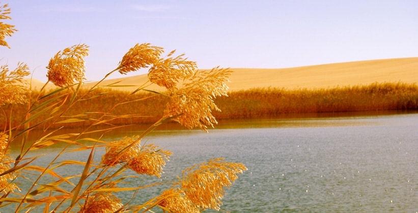 Великое песчаное море Египта