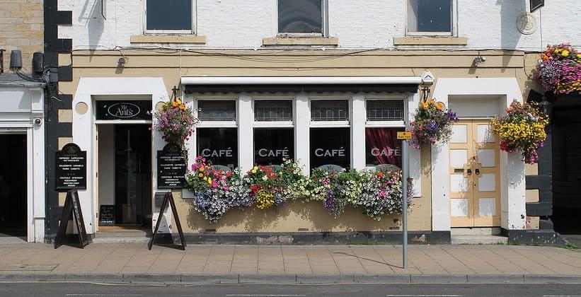 Кафе Mr. Ants в Хексеме (Англия)