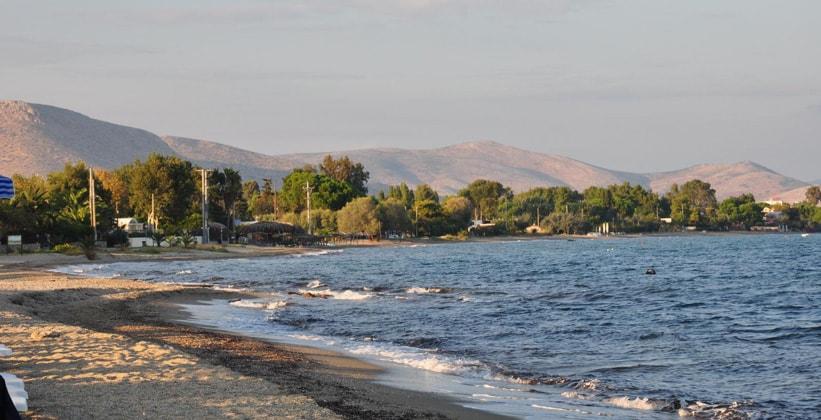 Марафон на Восточном побережье Аттики