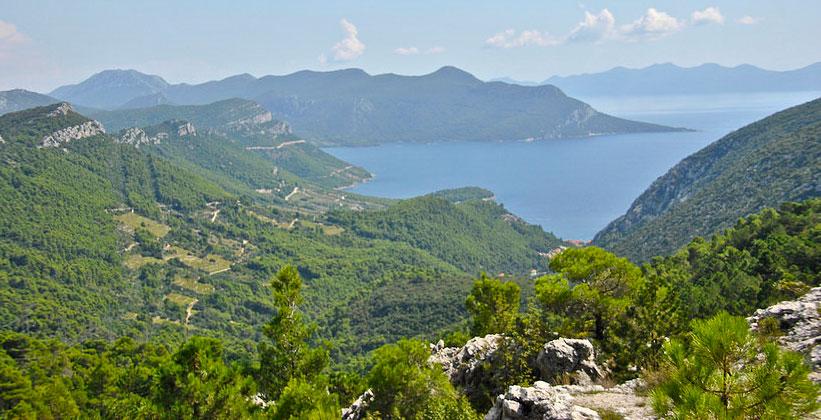 Полуостров Пелешац в Хорватии