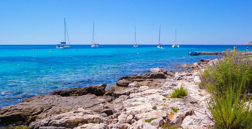 Остров Мали-Дрвеник в Хорватии
