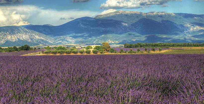 Красоты французского Прованса