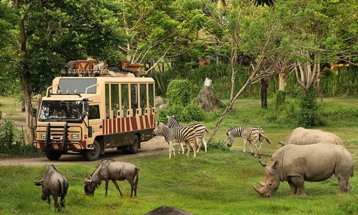 Необычные экскурсии на Бали