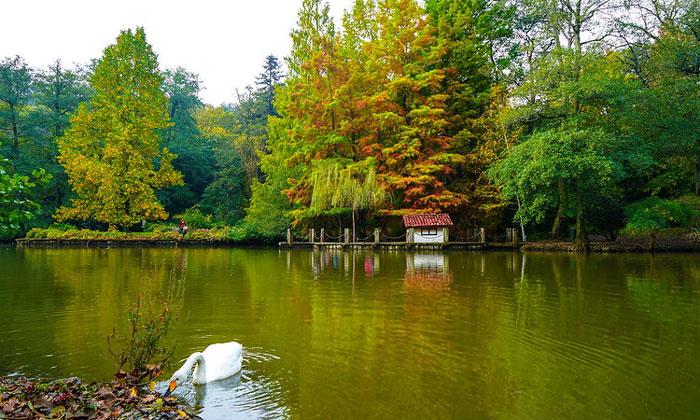 Белградский лес в Стамбуле