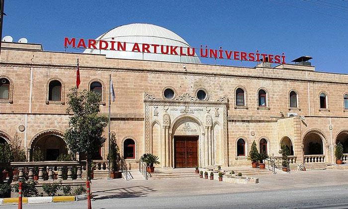 Университет Artuklu в Мардине