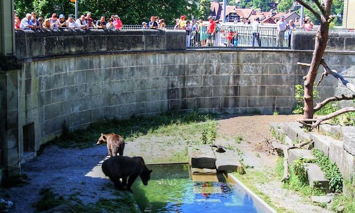 Медвежья Яма в Берне