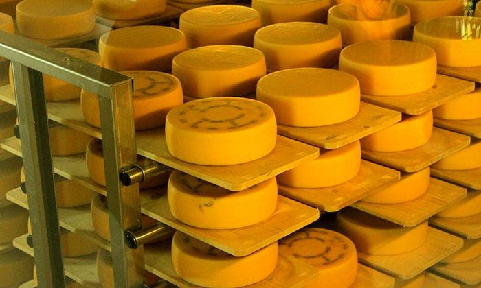 Аппенцелльский сыр Швейцарии