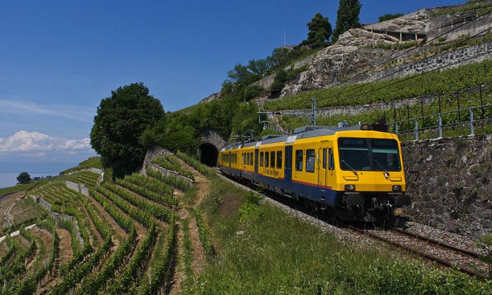 Экскурсии по окрестностям Веве на поезде Vignes